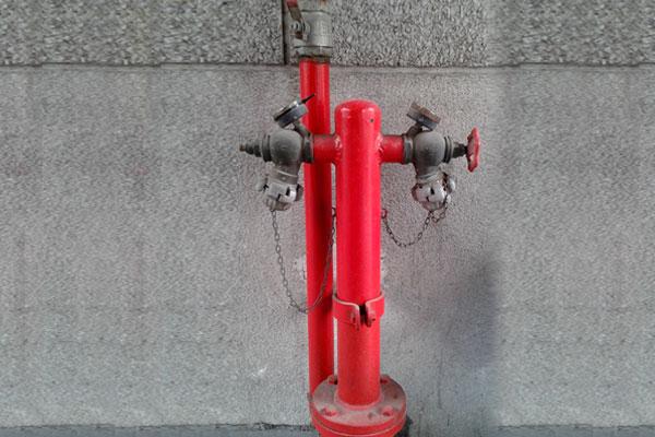 red presupuesto hidratantes contra incendio